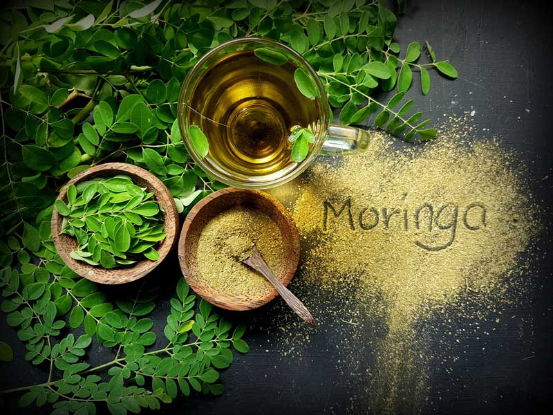 Where to Buy Moringa Tea? Let's Find Out